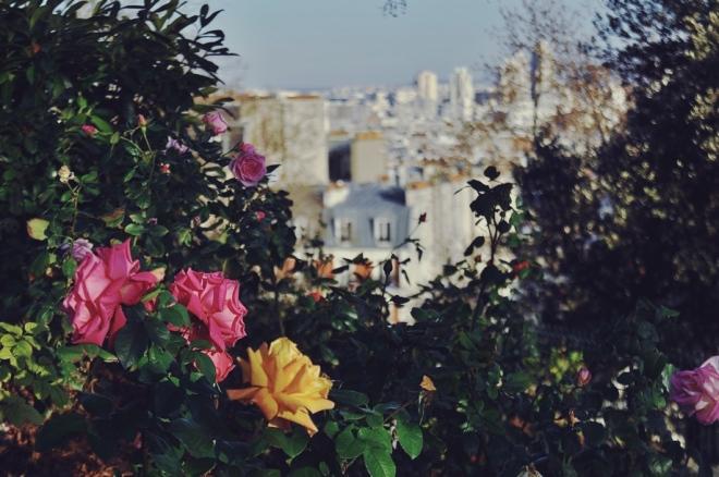 Monmartre-Paris-Roses